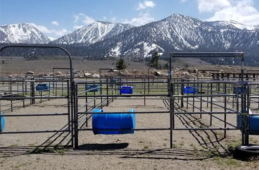 Horse Boarding – Sierra Meadows Ranch
